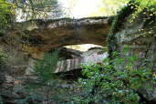 Ladd Natural Bridge
